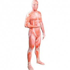 Shingeki no Kyojin Attack on Titan Cosplay Full Body Spandex Lycra Zentai